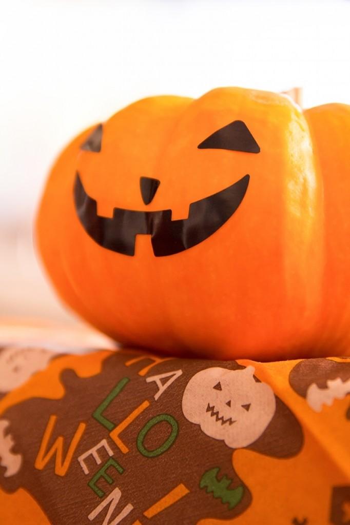 ハロウィンのアクリルたわしのキット かぼちゃ&ねこ&おばけで飾りに
